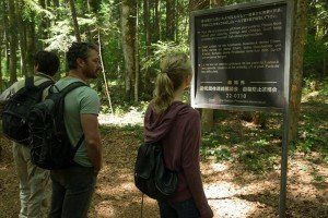 still-of-yukiyoshi-ozawa,-natalie-dormer-and-taylor-kinney-in-the-forest-(2016)-large-picture